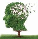 L'Idrocefalo normoteso dell'anziano