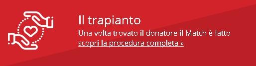 Match it now - il trapianto