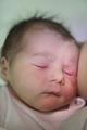 Anteprima Neonato