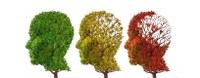 Anziano, declino cognitivo e fragilità